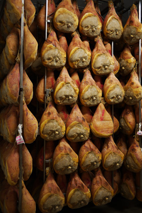 visit parma ham producer from Bologna