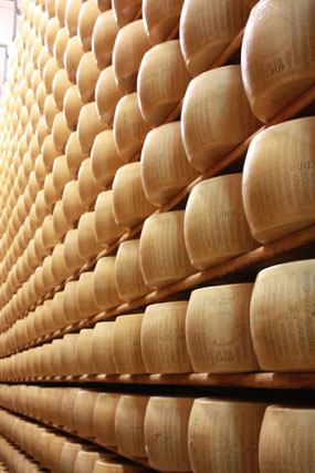 parmesan cheese tour in Parma